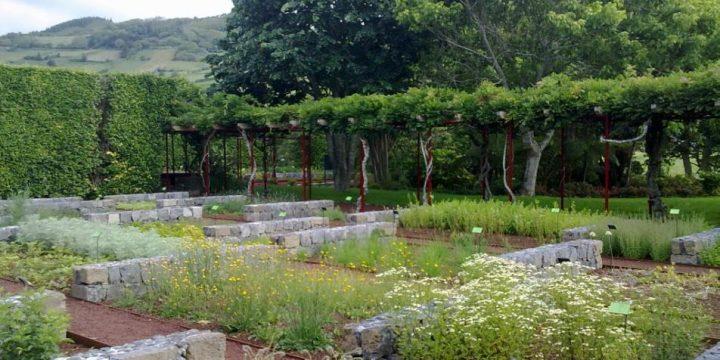 Empreitada de Execução de Ampliação e Reestruturação do Jardim Botânico do Faial